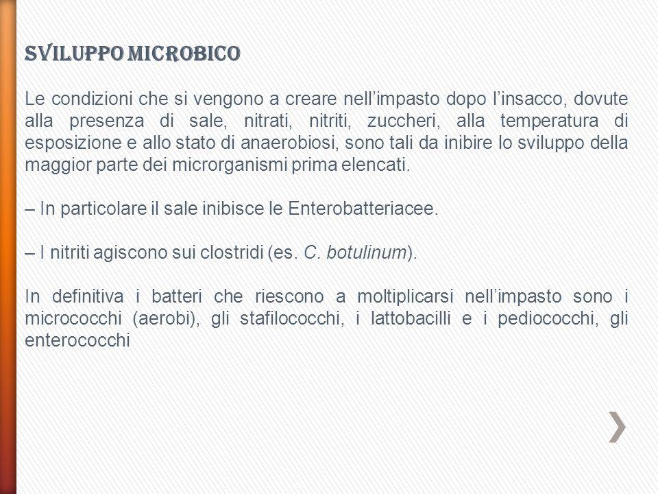 Sviluppo microbico