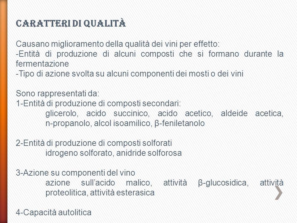 Caratteri di qualità Causano miglioramento della qualità dei vini per effetto: