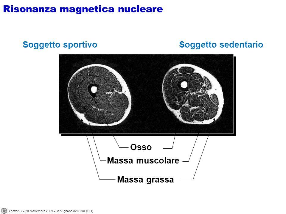 Lazzer S. - 28 Novembre 2009 - Cervignano del Friuli (UD)