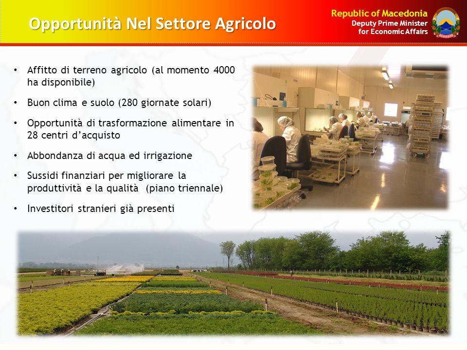 Opportunità Nel Settore Agricolo