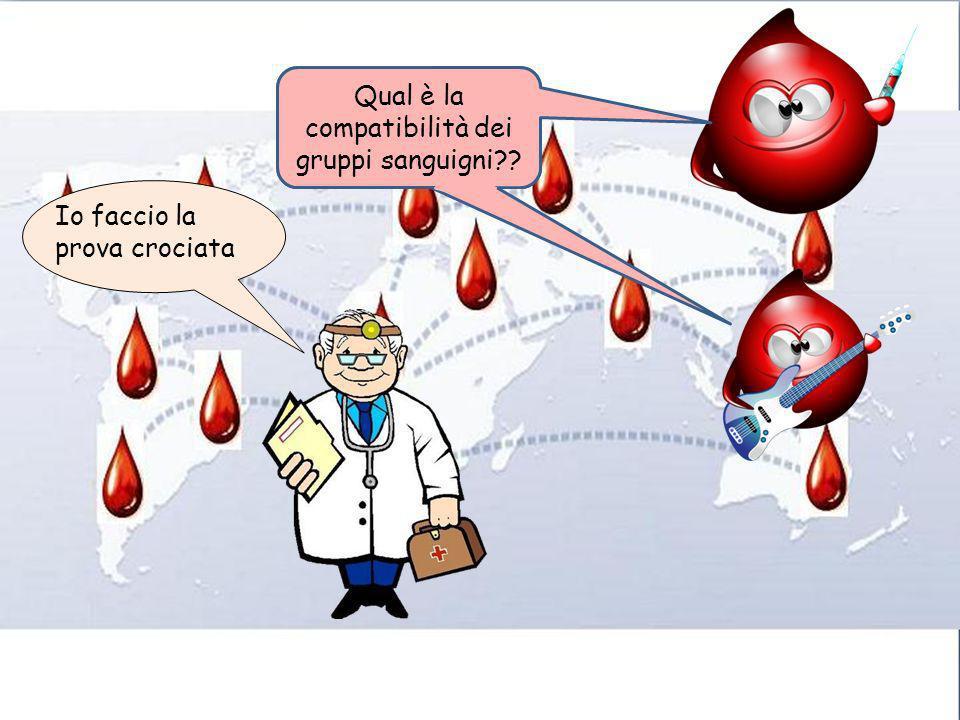 Qual è la compatibilità dei gruppi sanguigni