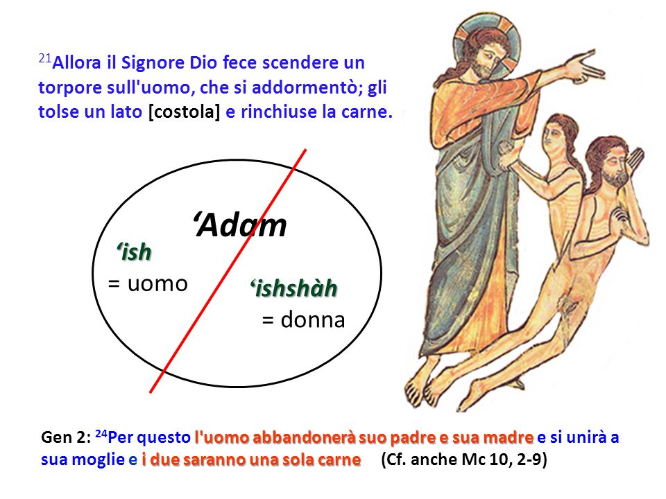 'Adam 'ish = uomo 'ishshàh = donna