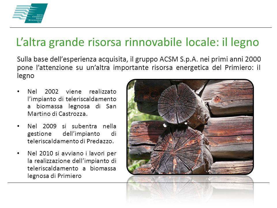 L'altra grande risorsa rinnovabile locale: il legno