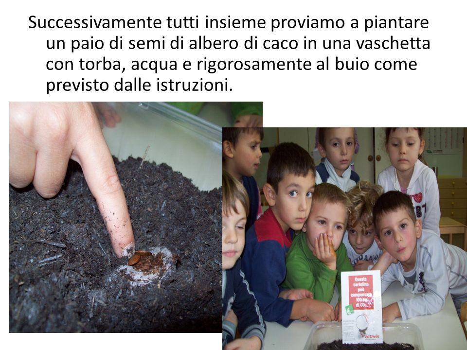 Successivamente tutti insieme proviamo a piantare un paio di semi di albero di caco in una vaschetta con torba, acqua e rigorosamente al buio come previsto dalle istruzioni.