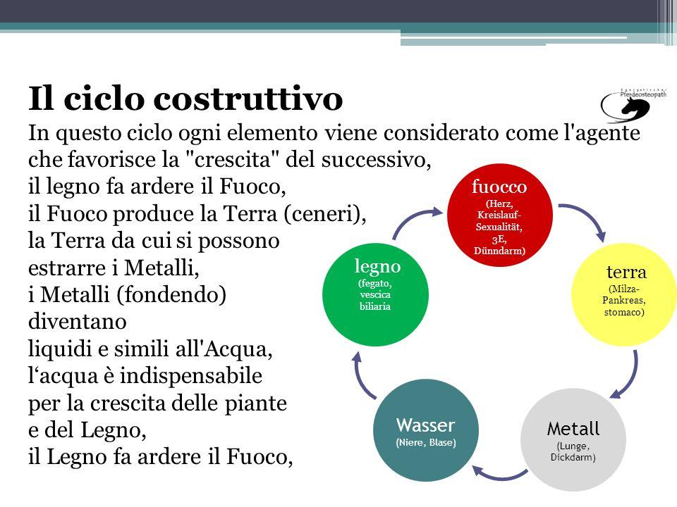Il ciclo costruttivo In questo ciclo ogni elemento viene considerato come l agente che favorisce la crescita del successivo,