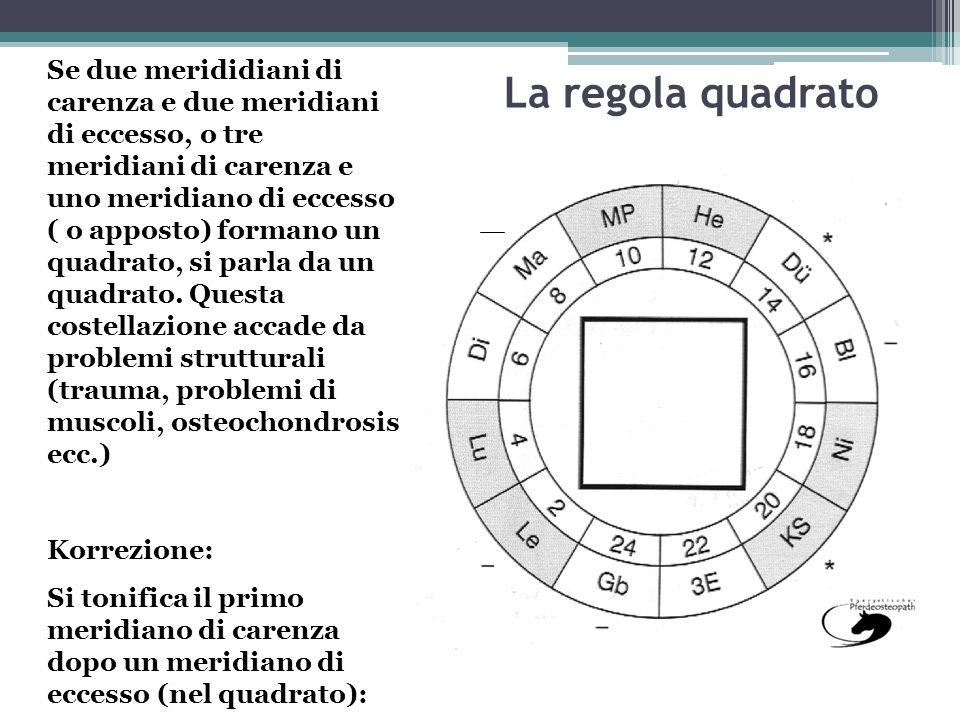 Se due merididiani di carenza e due meridiani di eccesso, o tre meridiani di carenza e uno meridiano di eccesso ( o apposto) formano un quadrato, si parla da un quadrato. Questa costellazione accade da problemi strutturali (trauma, problemi di muscoli, osteochondrosis ecc.)