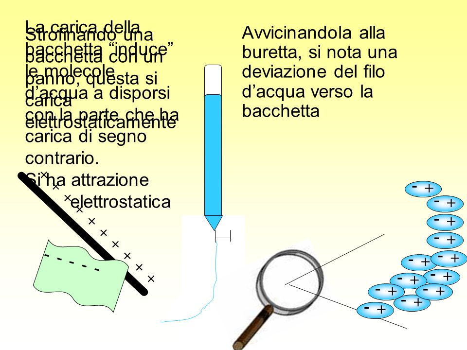 La carica della bacchetta induce le molecole d'acqua a disporsi con la parte che ha carica di segno contrario.