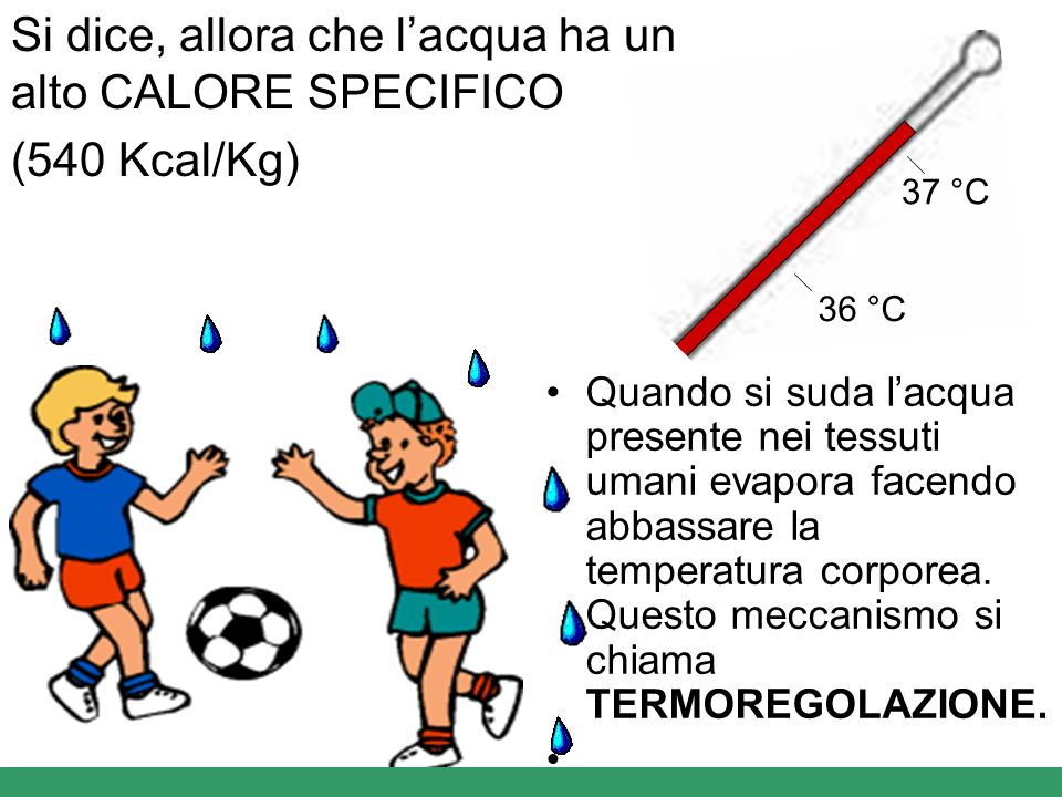 Si dice, allora che l'acqua ha un alto CALORE SPECIFICO (540 Kcal/Kg)
