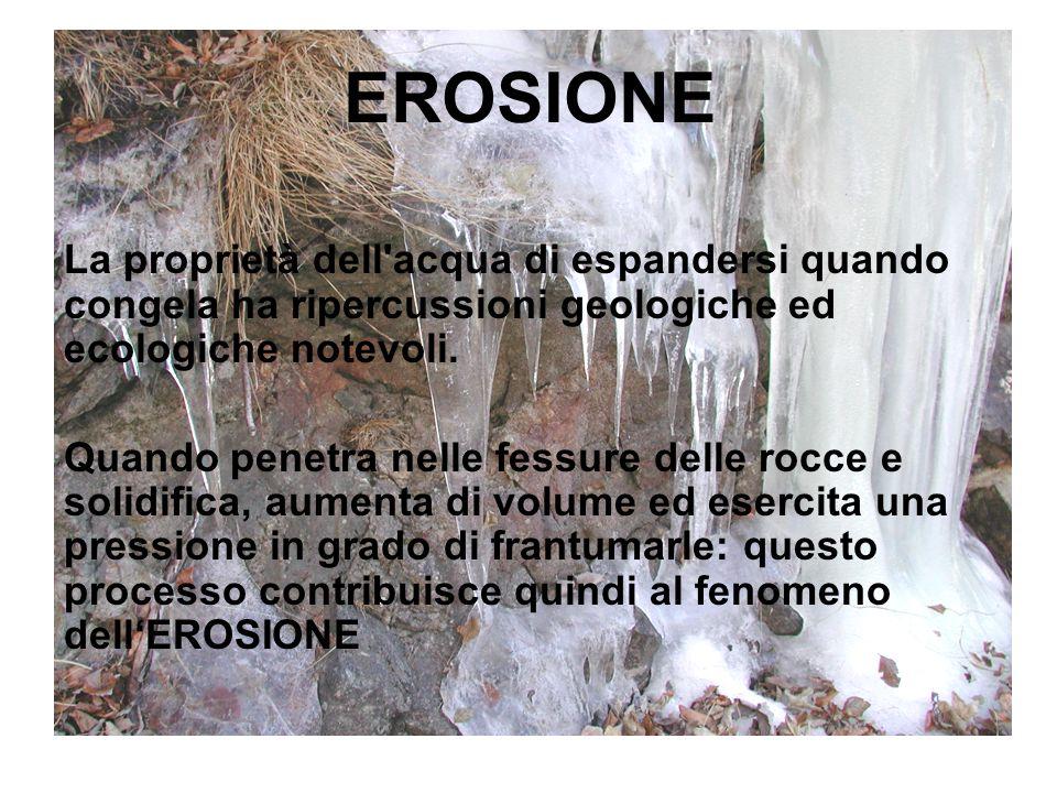 EROSIONE La proprietà dell acqua di espandersi quando congela ha ripercussioni geologiche ed ecologiche notevoli.