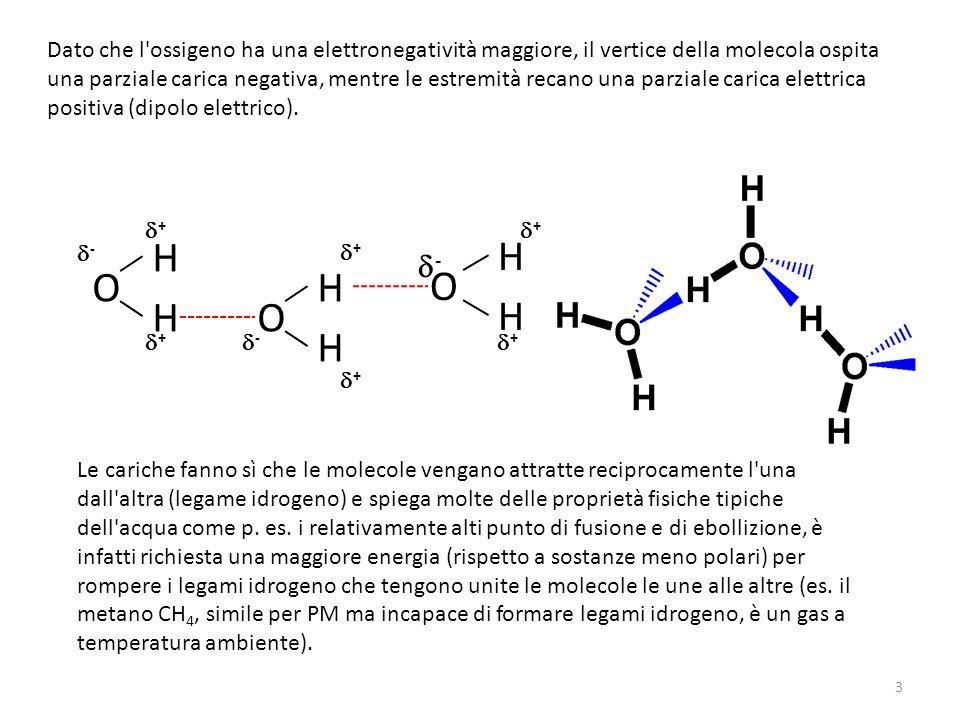 Dato che l ossigeno ha una elettronegatività maggiore, il vertice della molecola ospita una parziale carica negativa, mentre le estremità recano una parziale carica elettrica positiva (dipolo elettrico).