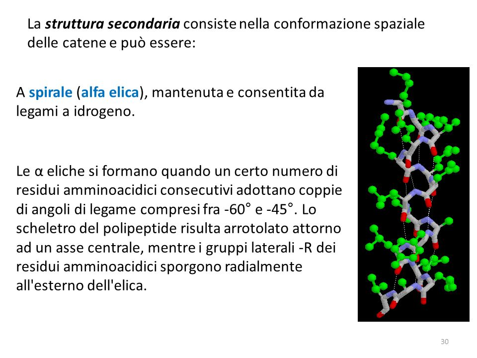 La struttura secondaria consiste nella conformazione spaziale delle catene e può essere:
