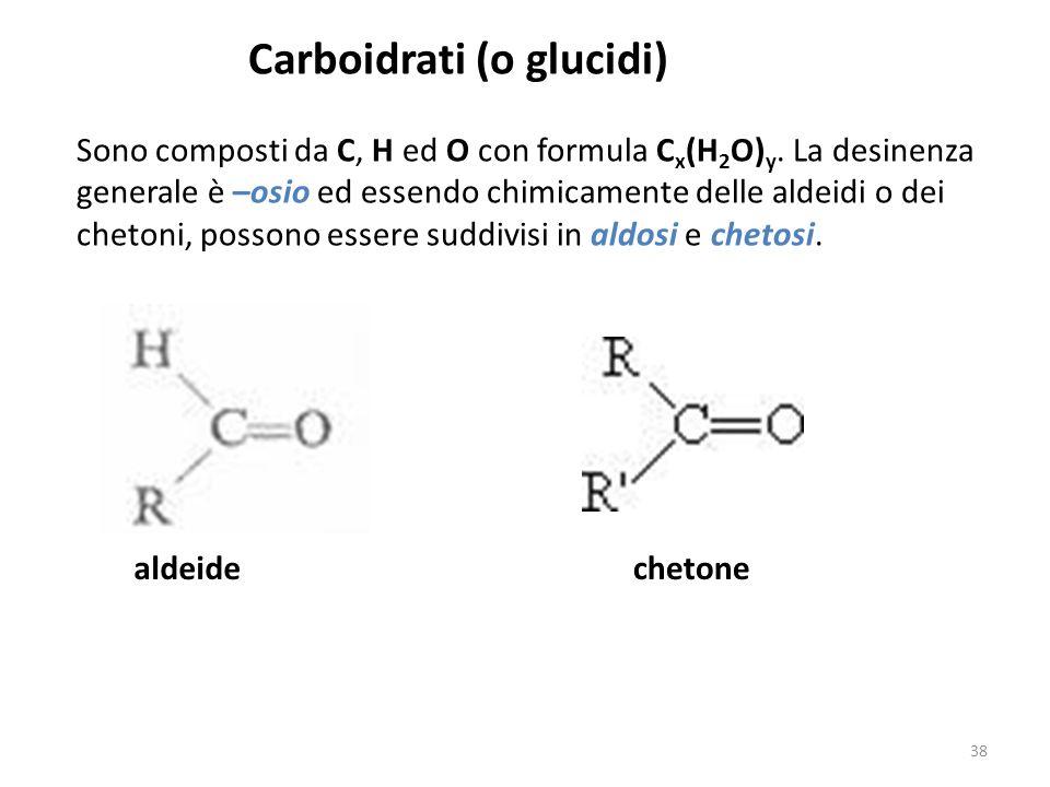 Carboidrati (o glucidi)