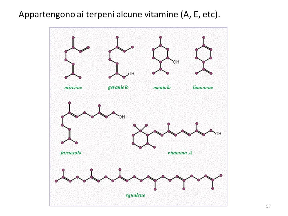Appartengono ai terpeni alcune vitamine (A, E, etc).