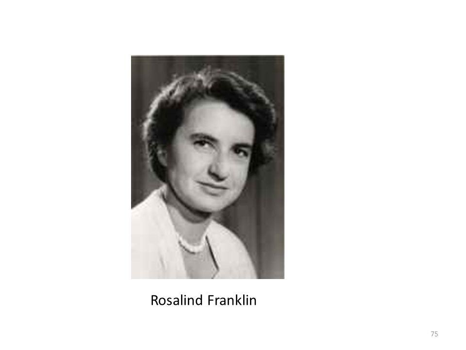 Nel gennaio 1951, Franklin iniziò a lavorare come ricercatrice associata al King s College di Londra e nell Unità di Biofisica del Medical Research Council (MRC), diretta da John Randall. Anche se in origine avrebbe dovuto lavorare sulla diffrazione a raggi x di proteine in soluzione, il suo lavoro fu cambiato nell analisi di fibre di DNA prima ancora che iniziasse a lavorare al King s College. Maurice Wilkins e Raymond Gosling avevano analizzato il DNA con il metodo della diffrazione a raggi x dal 1950.