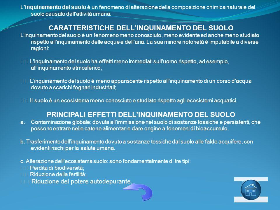 CARATTERISTICHE DELL'INQUINAMENTO DEL SUOLO