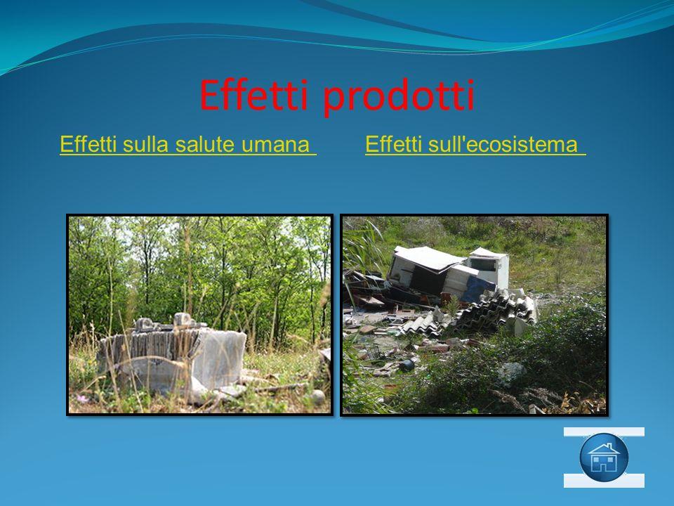 Effetti prodotti Effetti sulla salute umana Effetti sull ecosistema