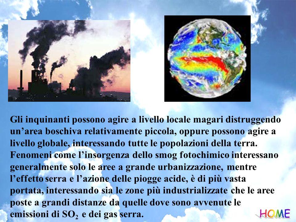 Gli inquinanti possono agire a livello locale magari distruggendo un'area boschiva relativamente piccola, oppure possono agire a livello globale, interessando tutte le popolazioni della terra. Fenomeni come l'insorgenza dello smog fotochimico interessano generalmente solo le aree a grande urbanizzazione, mentre l'effetto serra e l'azione delle piogge acide, è di più vasta portata, interessando sia le zone più industrializzate che le aree poste a grandi distanze da quelle dove sono avvenute le emissioni di SO2 e dei gas serra.