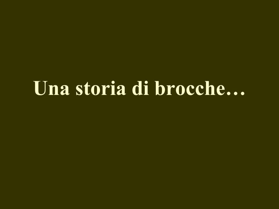Una storia di brocche…