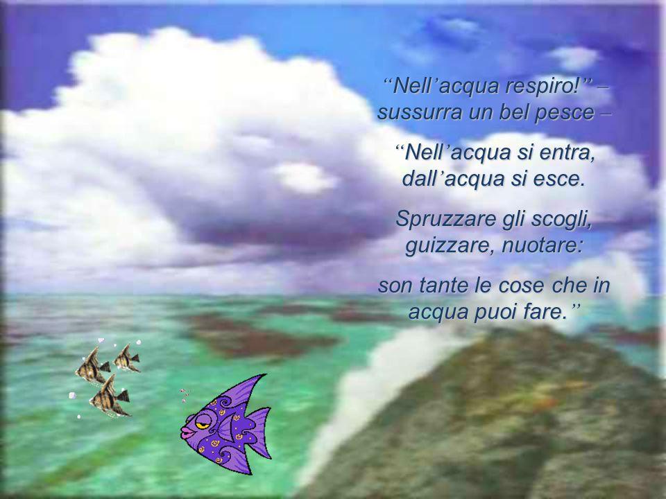 Nell'acqua respiro! – sussurra un bel pesce –