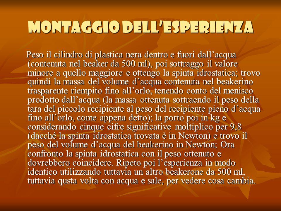 MONTAGGIO DELL'ESPERIENZA