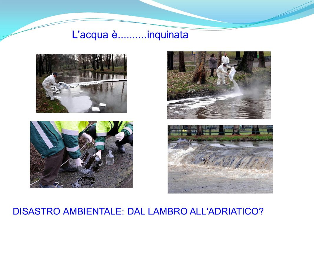 L acqua è..........inquinata DISASTRO AMBIENTALE: DAL LAMBRO ALL ADRIATICO