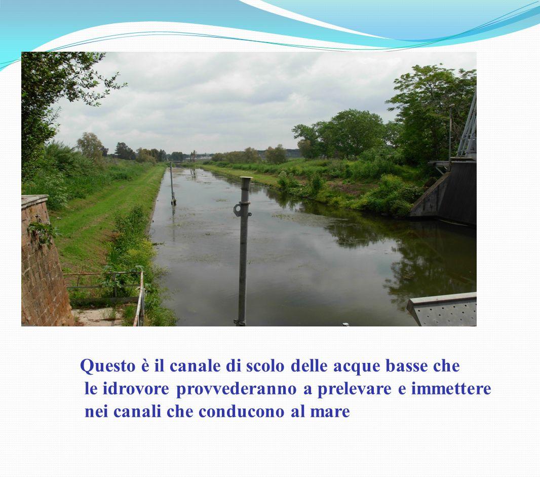 Questo è il canale di scolo delle acque basse che