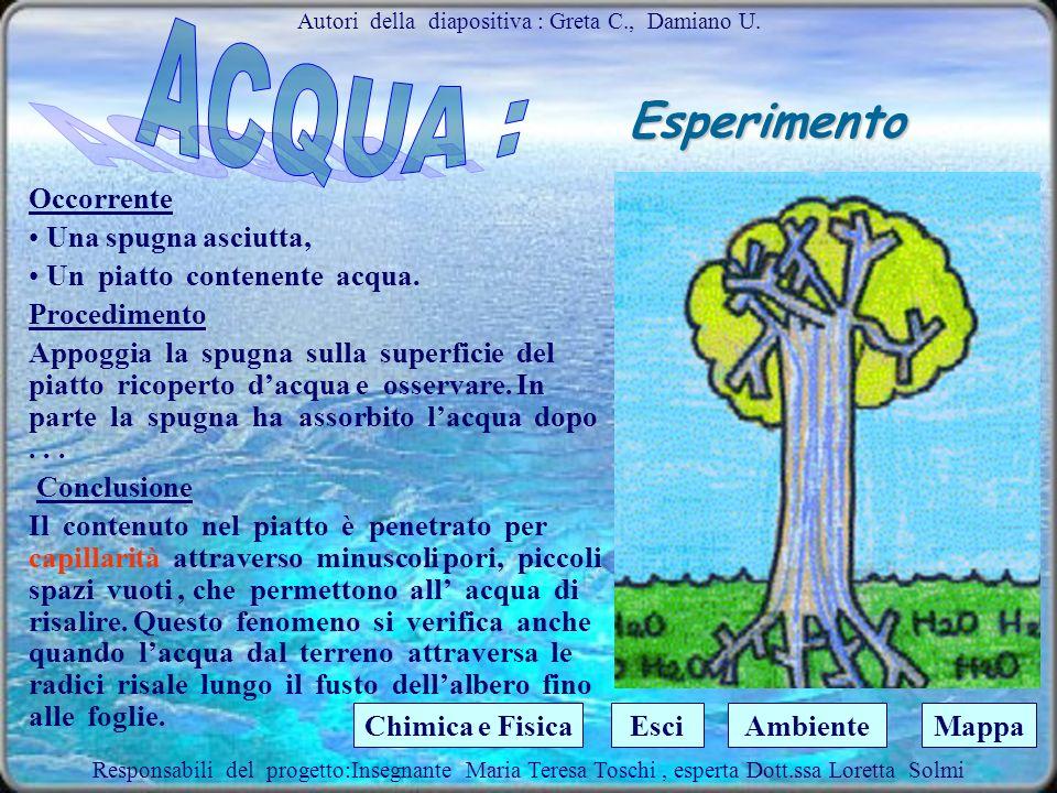 Autori della diapositiva : Greta C., Damiano U.