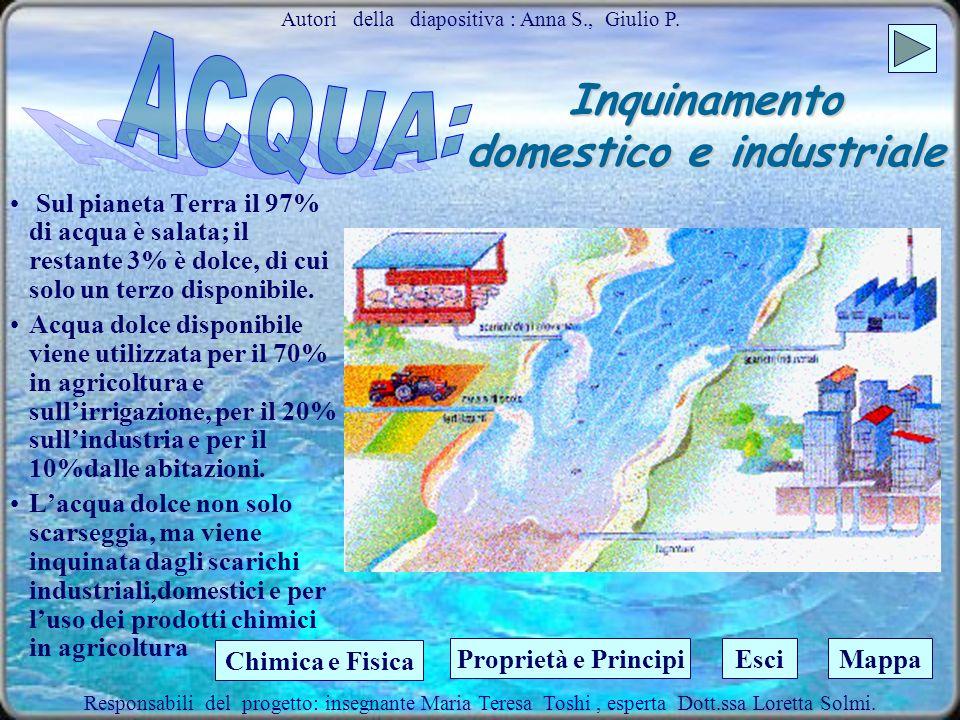 Inquinamento domestico e industriale
