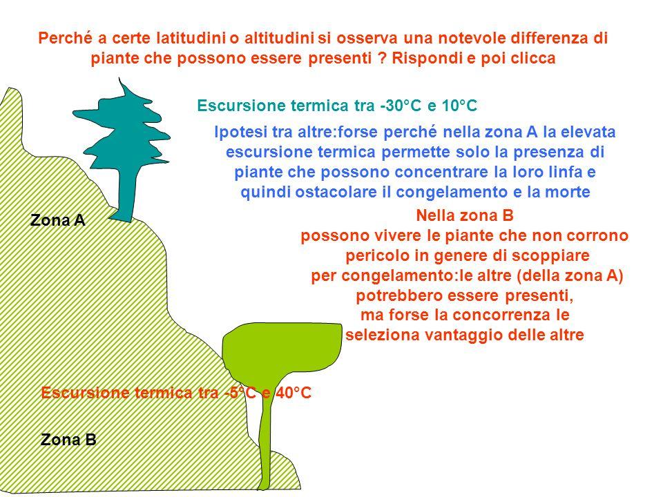 Perché a certe latitudini o altitudini si osserva una notevole differenza di piante che possono essere presenti Rispondi e poi clicca