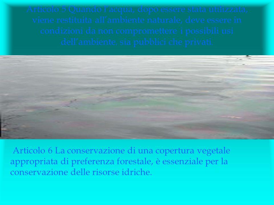 Articolo 5 Quando l'acqua, dopo essere stata utilizzata, viene restituita all'ambiente naturale, deve essere in condizioni da non compromettere i possibili usi dell'ambiente, sia pubblici che privati.