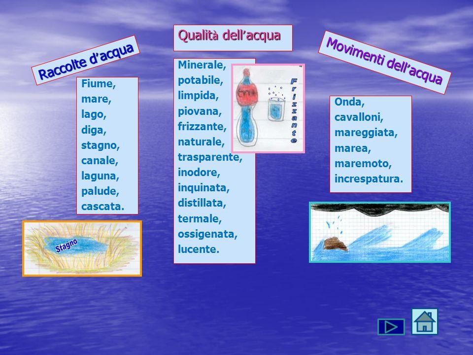 Qualità dell'acqua Movimenti dell'acqua Raccolte d'acqua Minerale,