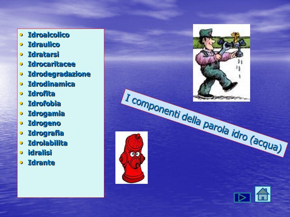 I componenti della parola idro (acqua)