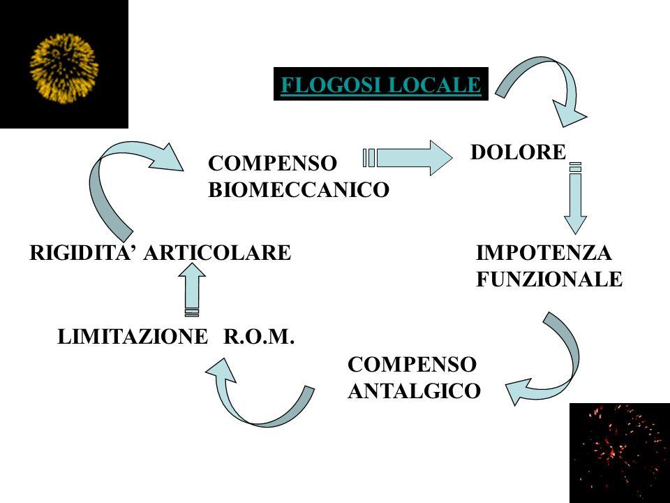 FLOGOSI LOCALE DOLORE. COMPENSO. BIOMECCANICO. RIGIDITA' ARTICOLARE. IMPOTENZA. FUNZIONALE. LIMITAZIONE R.O.M.