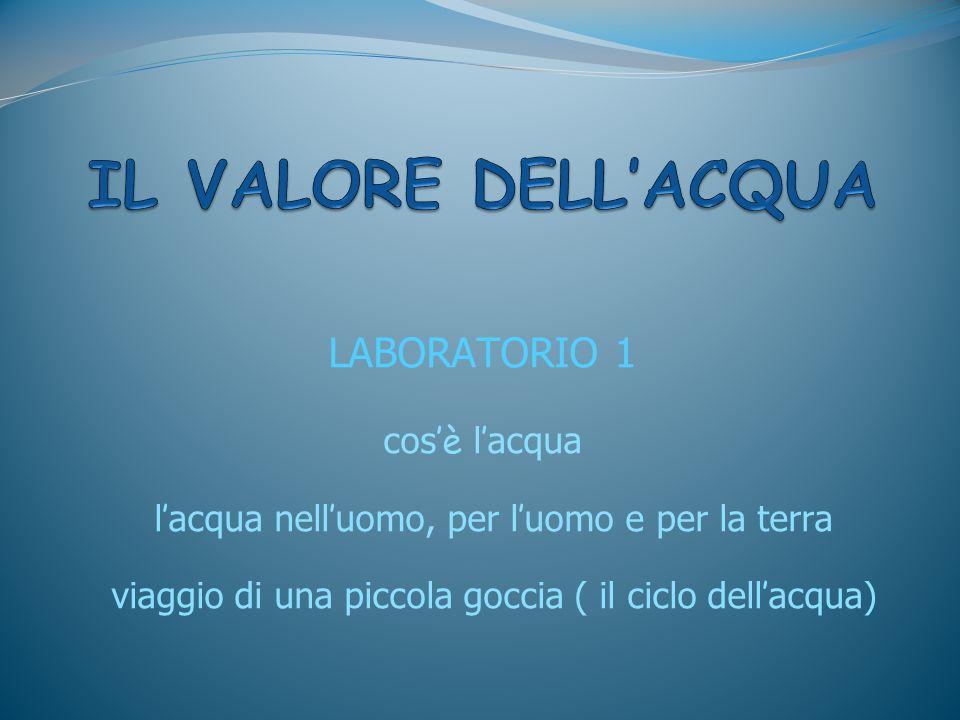 IL VALORE DELL'ACQUA LABORATORIO 1 cos'è l'acqua