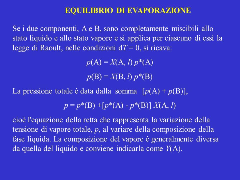 EQUILIBRIO DI EVAPORAZIONE