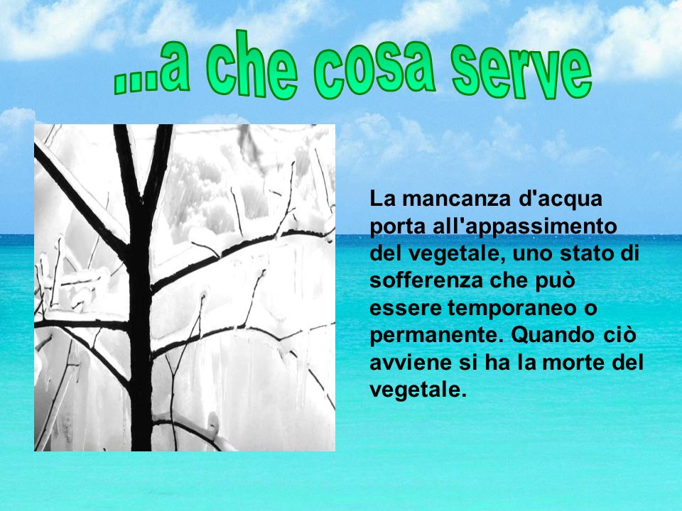 ...a che cosa serve