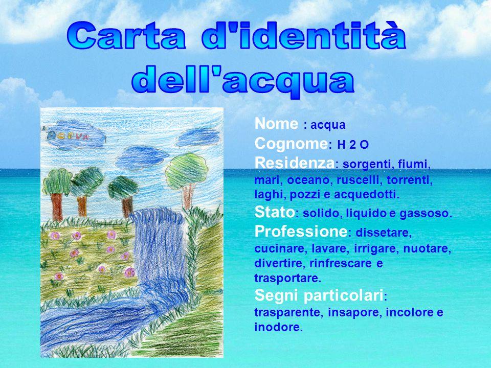 Carta d identità dell acqua Nome : acqua Cognome: H 2 O