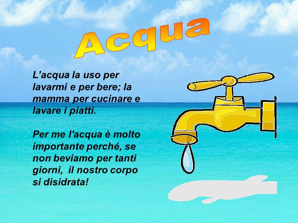 Acqua L'acqua la uso per lavarmi e per bere; la mamma per cucinare e lavare i piatti.