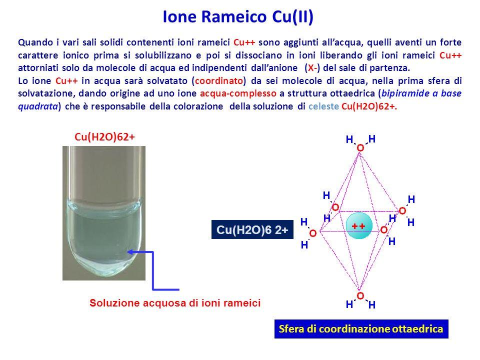 Ione Rameico Cu(II) Cu(H2O)62+ Cu(H2O)6 2+
