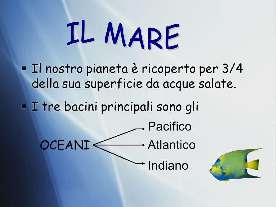 IL MARE Il nostro pianeta è ricoperto per 3/4 della sua superficie da acque salate. I tre bacini principali sono gli.