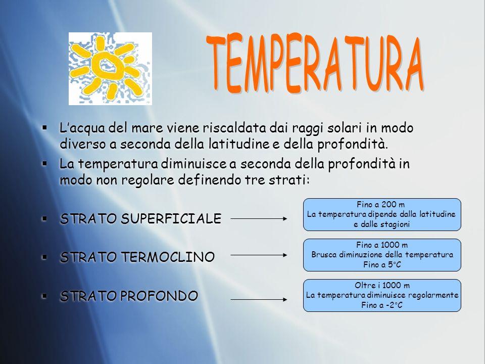 TEMPERATURA L'acqua del mare viene riscaldata dai raggi solari in modo diverso a seconda della latitudine e della profondità.