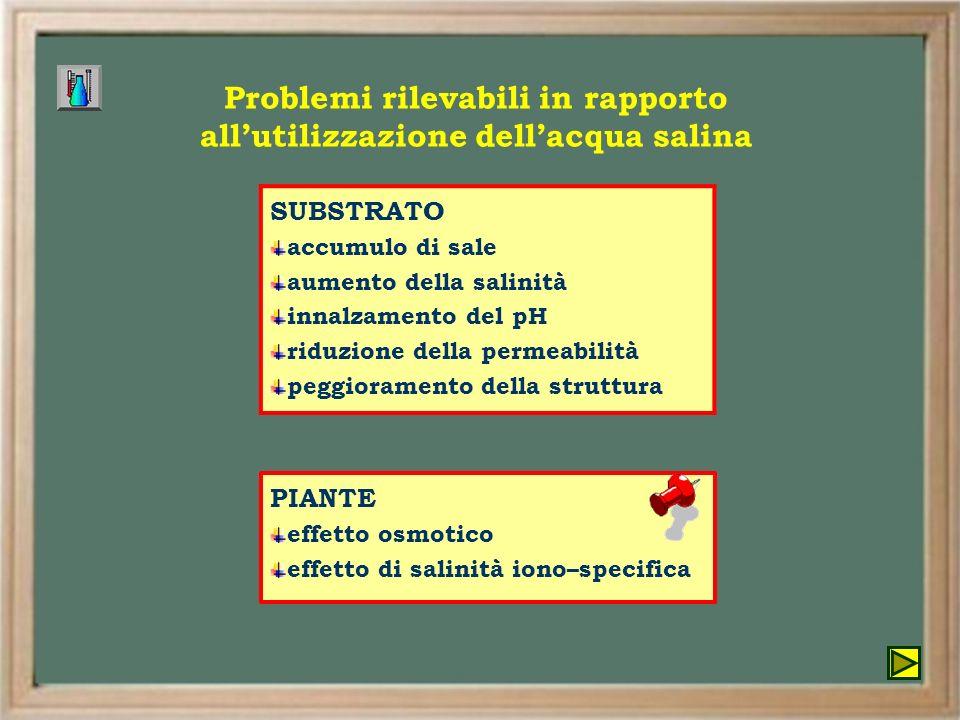 Problemi rilevabili in rapporto all'utilizzazione dell'acqua salina