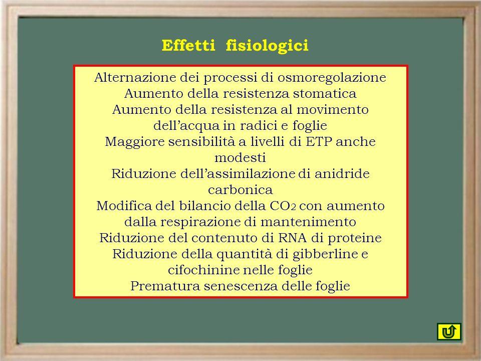 Effetti fisiologici Alternazione dei processi di osmoregolazione