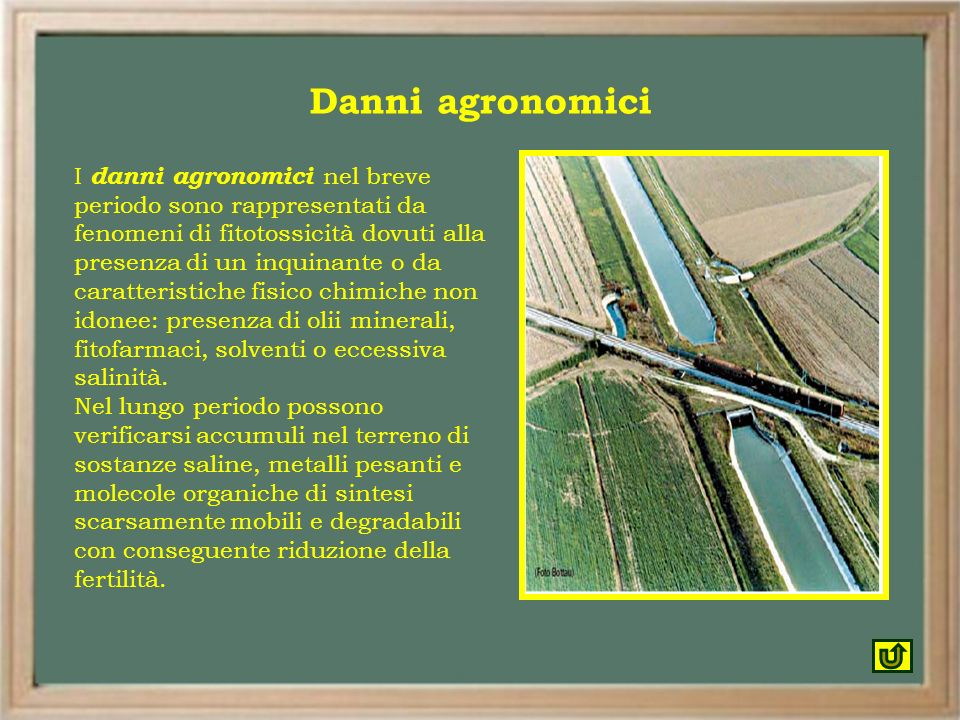 Danni agronomici