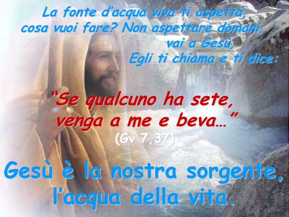 Gesù è la nostra sorgente, l'acqua della vita.