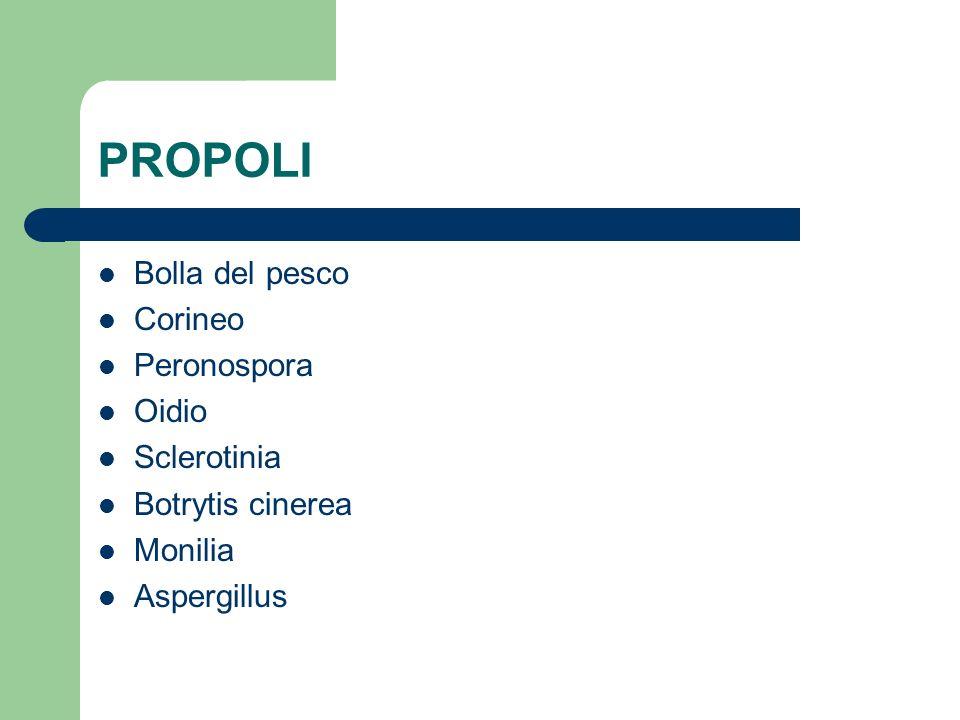 PROPOLI Bolla del pesco Corineo Peronospora Oidio Sclerotinia