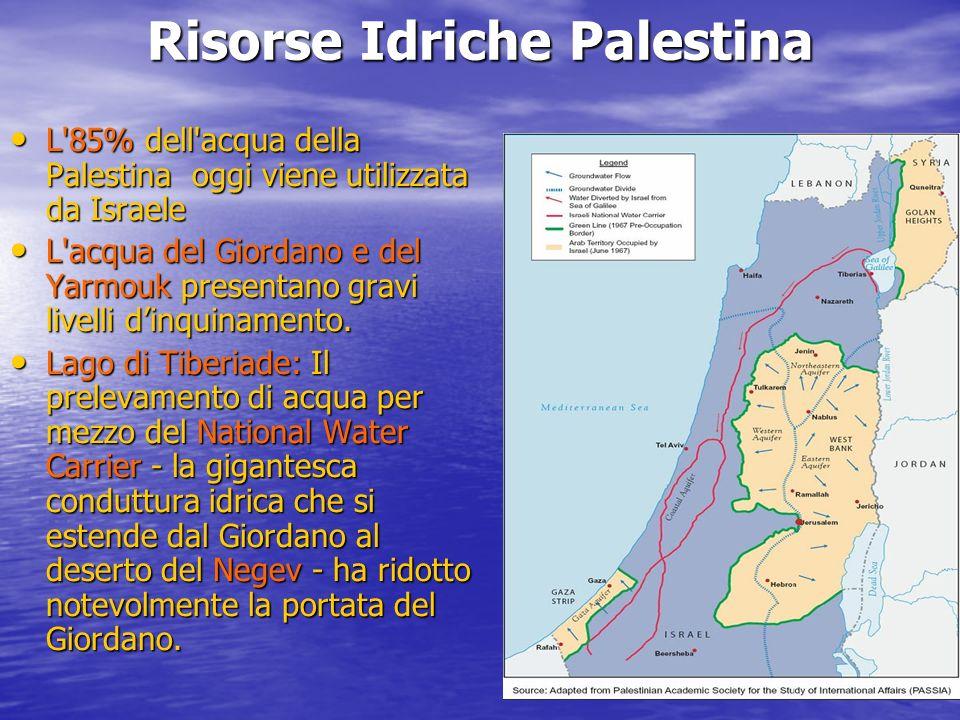 Risorse Idriche Palestina