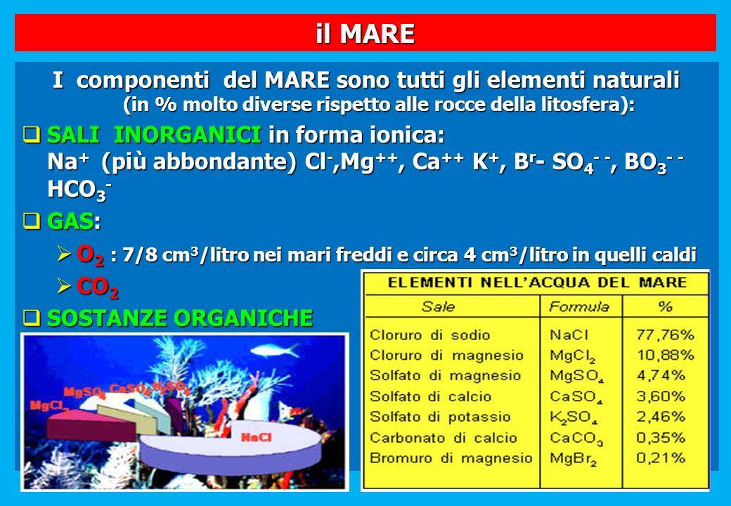il MARE I componenti del MARE sono tutti gli elementi naturali (in % molto diverse rispetto alle rocce della litosfera):