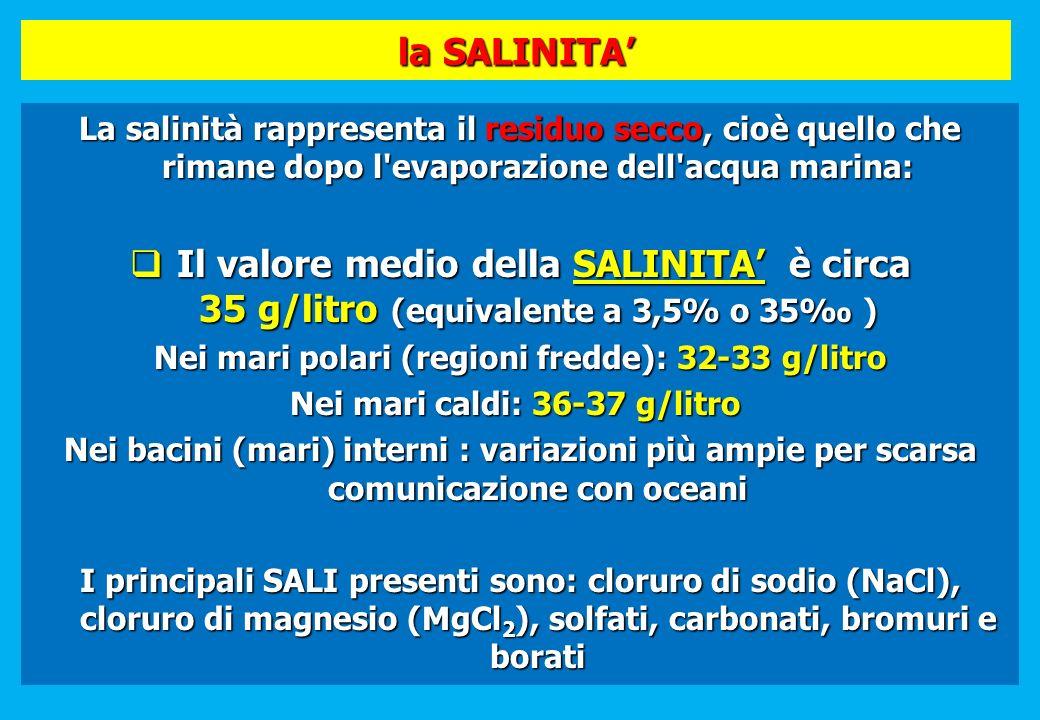 la SALINITA' La salinità rappresenta il residuo secco, cioè quello che rimane dopo l evaporazione dell acqua marina: