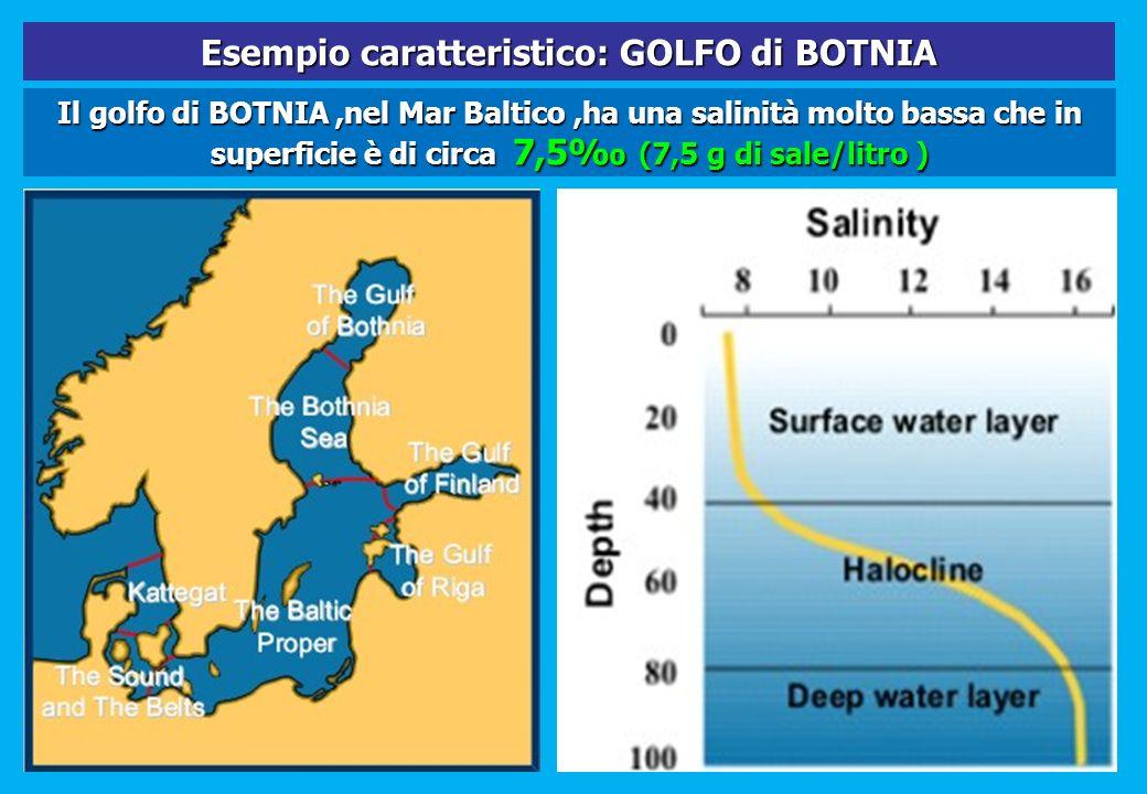 Esempio caratteristico: GOLFO di BOTNIA